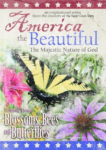 america the beautiful essays