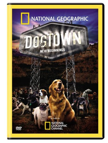 Dogtown: New Beginnings