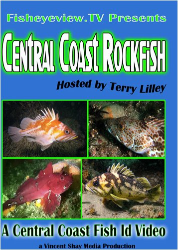Central Coast Rockfish w/Terry Lilley