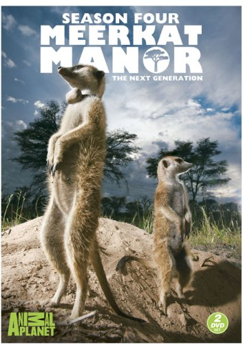 Meerkat Manor Season 4