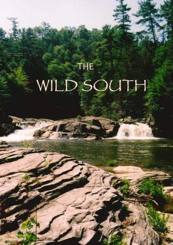 The Wild South