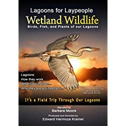 Lagoons for Laypeople - Wetland Wildlife