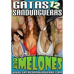 Gatas Sandungueras Vol 12 Que Melones Reggaeton y Perreo