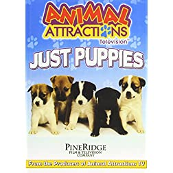 Aimal Attractions Television: Just Puppies