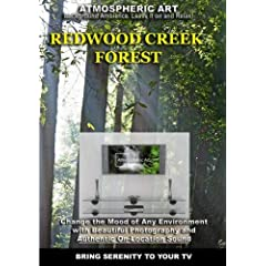 The Redwood Creek Forest