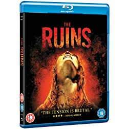 Ruins [Blu-ray]