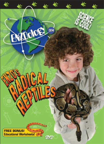 Enzoology Radical Reptiles