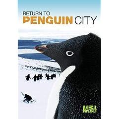 Return To Penguin City