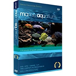 Marine Aquarium