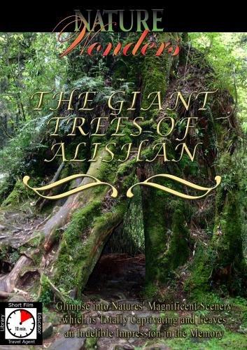 Nature Wonders THE GIANT TREES OF ALISHAN