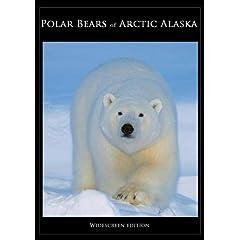 Polar Bears of Arctic Alaska