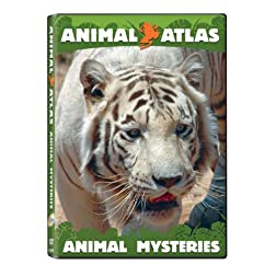 Animal Atlas: Animal Mysteries
