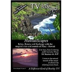 TV ArtScapes   -  HawaiiScapes    Vol V