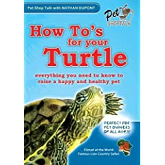 How To's For Your Turtle