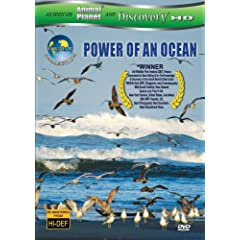 Equator 1: Power Of An Ocean (As seen on Discovery HD & Animal Planet)