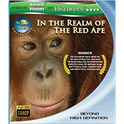 Wild Asia 1: In the Realm Of The Red Ape [Blu-ray]