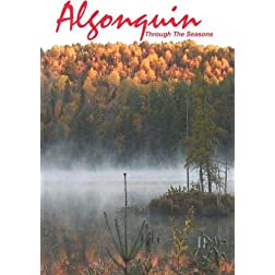 Algonquin Through The Seasons