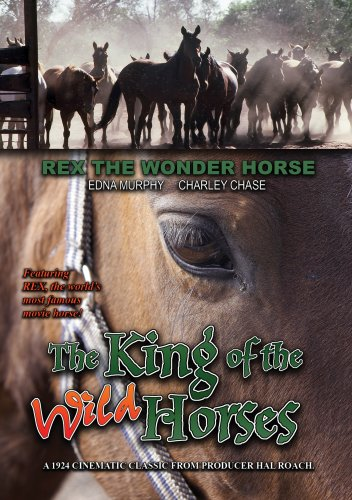 The King of the Wild Horses