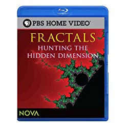 Fractals: Hunting the Hidden Dimension (Blu-ray) [Blu-ray]