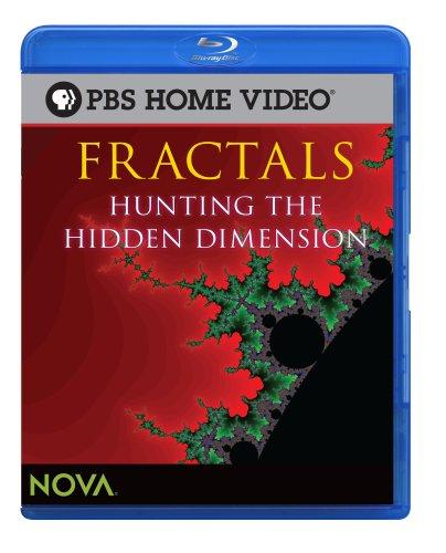 Fractals: Hunting the Hidden Dimension (Blu-ray) [Blu-ray]