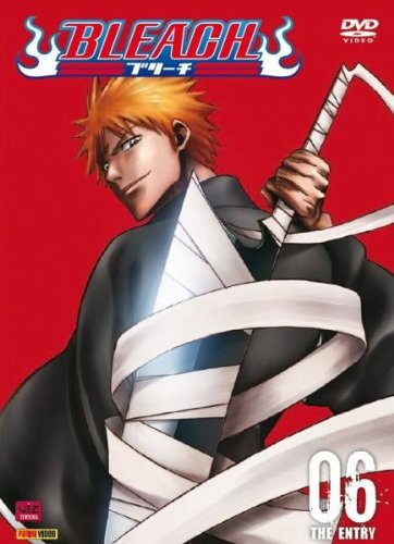 Vol. 6-Bleach