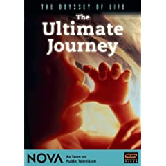 The Ultimate Journey