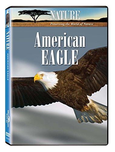 Nature:American Eagle