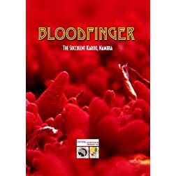 Bloodfinger - The Succulent Karoo, Namibia