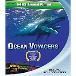 Ocean Voyager [Blu-ray]