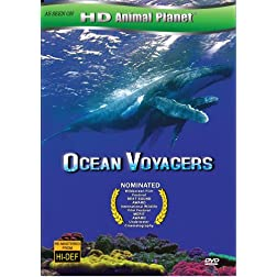 Ocean Voyager
