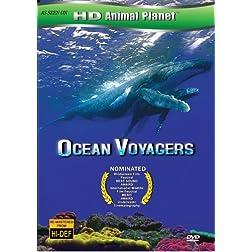 Ocean Voyager