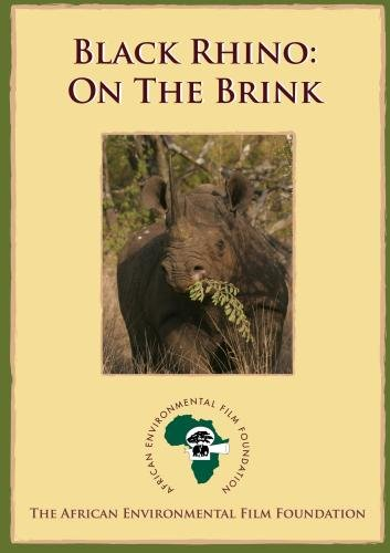 Black Rhino - On the Brink