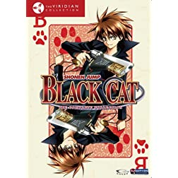 Black Cat Box Set (Viridian Collection)