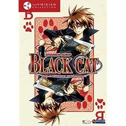 Black Cat Box Set (Viridian Collection)