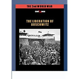 The Liberation of Auschwitz