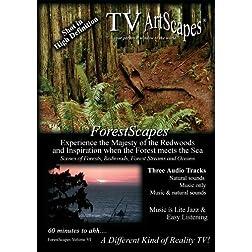 TV ArtScapes - ForestScapes  Volume VI
