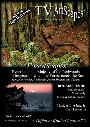 TV ArtScapes - ForestScapes  Volume VI
