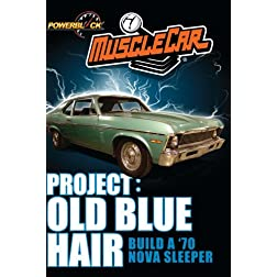 Project: Old Blue Hair