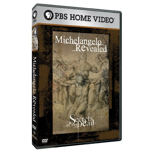 SOD: Michelangelo Revealed