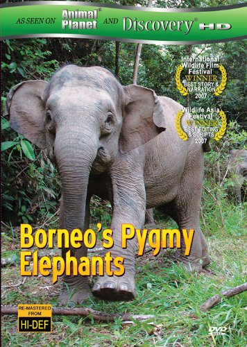 Borneo's Pygmy Elephants (As seen on Discover HD)