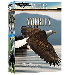 Nature: America (6pc)