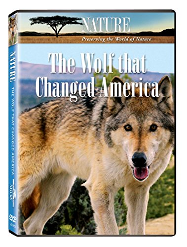 Nature: The Wolf That Changed America
