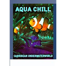 Aqua Chill - Carribean Underwaterworld Vol. 1