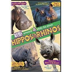 Hippos & Rhinos