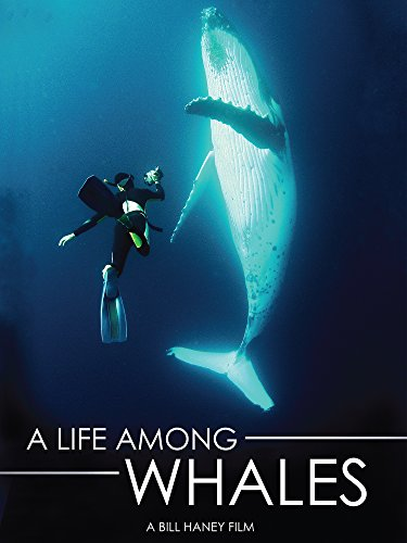 A Life Among Whales