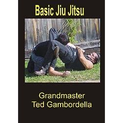 Basic Jiu Jitsu