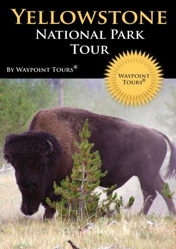 Yellowstone National Park Tour
