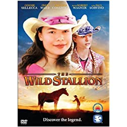 Wild Stallion