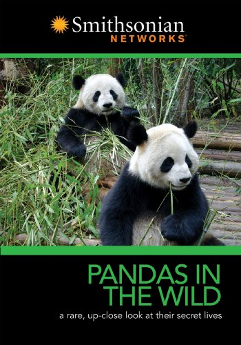 Pandas in the Wild