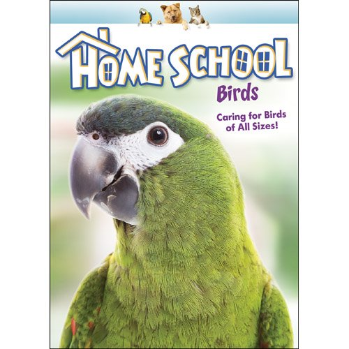 Home School: Birds